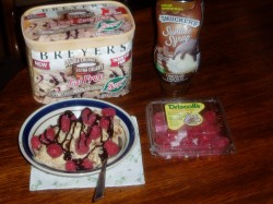 May 3-Cant find any SmartScoop anymore .. but Breyers has a good alternative. Raspberries and some Syrop make it a nice snack