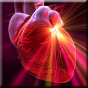 Heart Attack Risk Cut in Half
